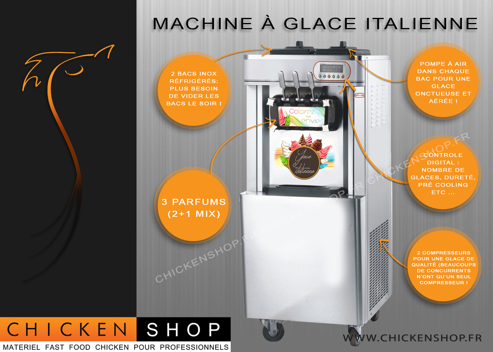 Machine a glaces Italienne 3 parfums